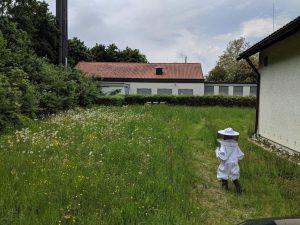 Magdalena-läuft-zu-BeeAndme-Beuten.jpg